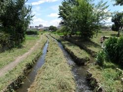 日野・素掘り用水