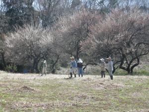 町田の春景色