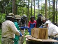 ミツバチ講座募集