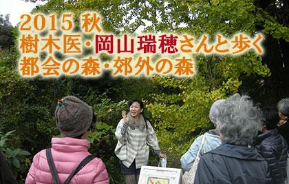 201510_jyumoku