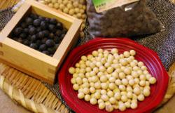 こだわり有機栽培で作った手作り丸大豆・みそ・なたね油