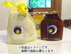 原村の百科蜜(日本ミツバチ)