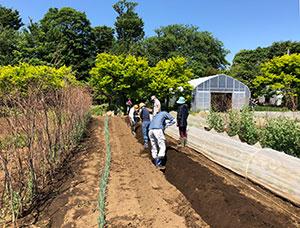 ゼロから始める家庭菜園実習