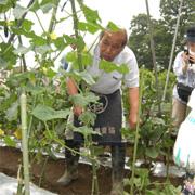 shokai_iguchi-san